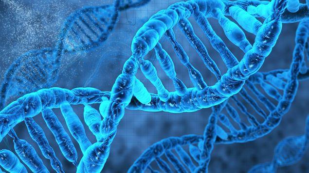 O DNA DA COISA JULGADA